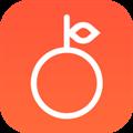 柚子练琴 V1.3 安卓版