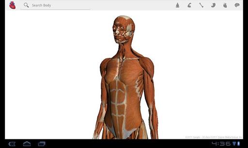 谷歌人体浏览器 V1.2 安卓版截图3