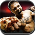3D热血拳霸 V1.1 安卓版