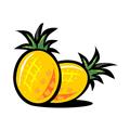 菠萝出行 V3.4.5 安卓版