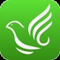 赛鸽世界 V1.1.7 安卓版