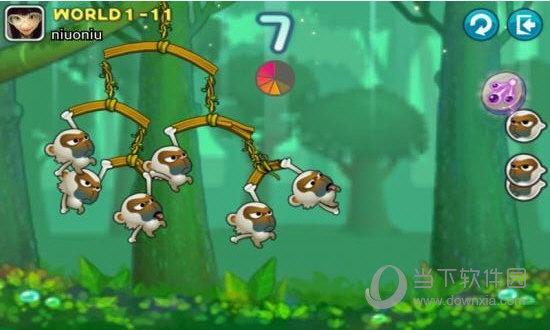 猴子也疯狂
