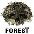 森林内置修改器 V0.57 绿色免费版