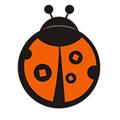 甲壳虫 V3.1.7 安卓版