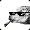 大金链子和雪茄图片制作软件 V2.5 安卓版