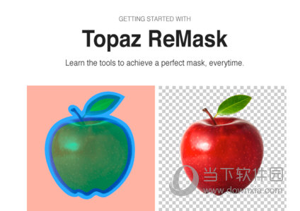 Topaz ReMask 下载