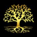 天弘大树财富 V3.7.3 安卓版