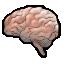 龙腾记忆力训练工具 V1.0 绿色免费版