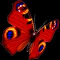 直播控麦音频特效软件 V1.0 绿色免费版