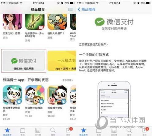App Store微信支付页面