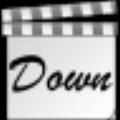视频下载高手 V10.0 绿色免费版