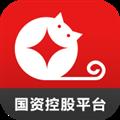 金贝猫 V1.1.2 安卓版