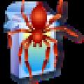 spider.exe(蜘蛛纸牌) V1.0 免费版