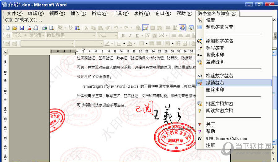 5S文档安全专家