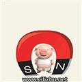 磁力猪电脑版 V1.0 网页版