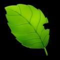 大家一起来记账号 V1.0 绿色版