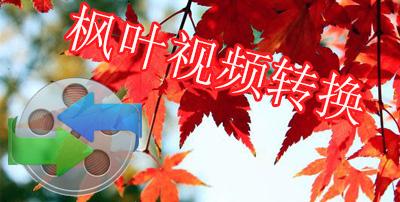 枫叶视频转化器
