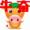 牛奋JJ记牌器 V0.8.0 绿色免费版