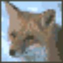 狐狗字体管理 V2005 绿色版