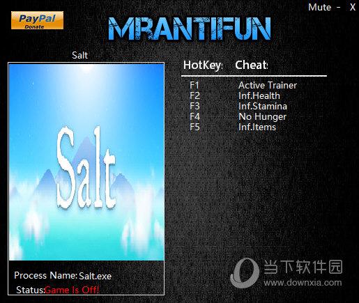 salt四项修改器