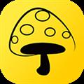 蘑菇丁 V2.4.12 安卓版