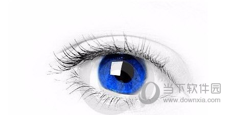 视力恢复方法