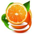 橙子视频 V1.0 安卓版
