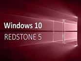 Win10 rs5 怎么更新 RS5升级手把手教程