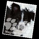 MagicWatermarks 3(图片加水印工具) V3.0 Mac版