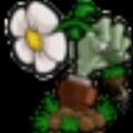 小丑植物大战僵尸多功能二次元辅助 V1.0 绿色免费版