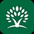 遇树林丰 V2.1.3 安卓版