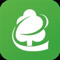 木材码头 V4.0.1 安卓版