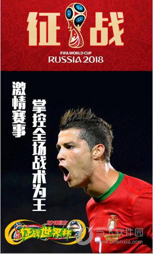 征战世界杯