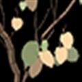 SketchupIvy(SketchUp藤蔓生成插件) V0.6.8 免费版