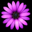TextMate(代码编辑软件) V2.0RC9 Mac破解版