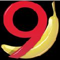 Banana(财务会计软件) V9.0 官方版