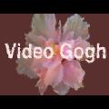 RevisionFX Video Gogh(AE水彩油画插件) V3.7 免费版