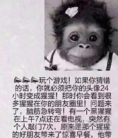 微信朋友圈猩猩头像是什么 朋友圈猩猩猜题答案分享