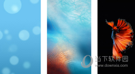 苹果手机墙纸界面