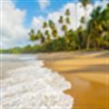 自然景观壁纸 V1.2 安卓版