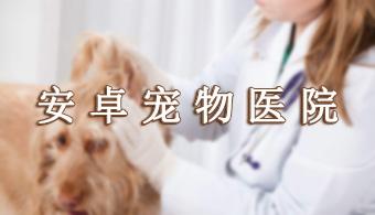 手机宠物医生