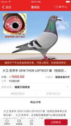 搜鸽天下 V1.4.15 安卓版截图3