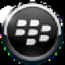 BerryBox(黑莓手机管理工具) V0.2.1 官方版