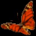 英语八哥动画学音标 V2.0 免费版