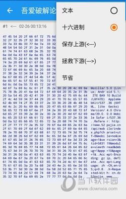 Packet Capture中文版