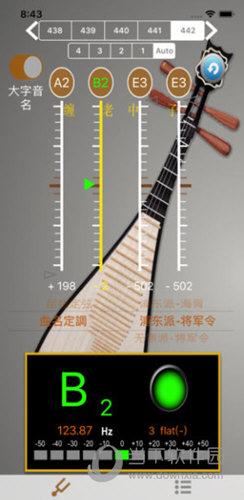 琵琶调音器