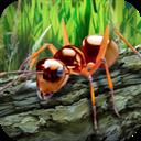 蚂蚁生存模拟器 V1.0 安卓版