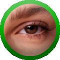 WATCHOUT(大屏拼接工具) V5.5.1 免费版
