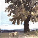 风景与艺术 V1.2.3 苹果版