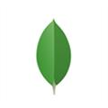MongoDB Compass(数据库应用) V1.14.0 Mac版
